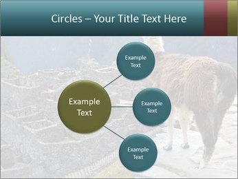 0000073375 PowerPoint Templates - Slide 79