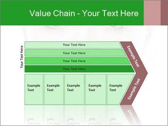 0000073385 PowerPoint Template - Slide 27