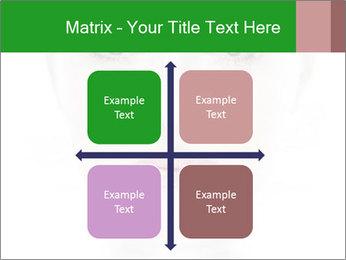 0000073385 PowerPoint Template - Slide 37