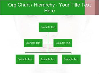 0000073385 PowerPoint Template - Slide 66