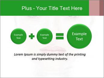 0000073385 PowerPoint Template - Slide 75