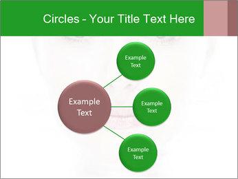 0000073385 PowerPoint Template - Slide 79