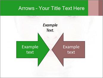 0000073385 PowerPoint Template - Slide 90