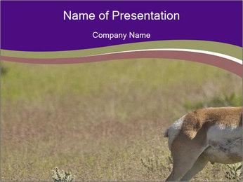 0000073387 PowerPoint Templates - Slide 1