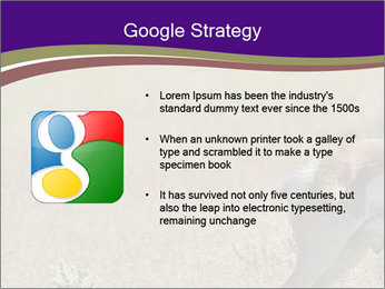 0000073387 PowerPoint Templates - Slide 10