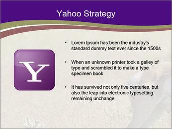 0000073387 PowerPoint Templates - Slide 11
