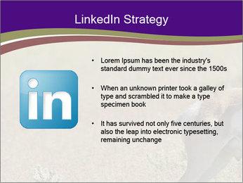 0000073387 PowerPoint Templates - Slide 12