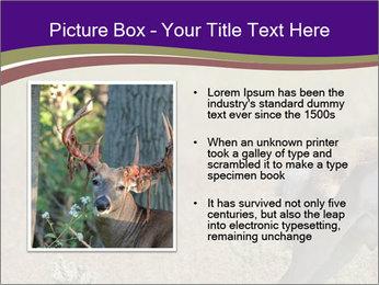 0000073387 PowerPoint Templates - Slide 13