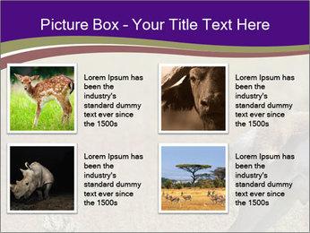 0000073387 PowerPoint Templates - Slide 14