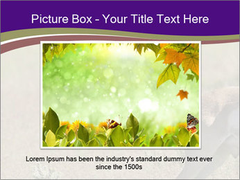 0000073387 PowerPoint Templates - Slide 16
