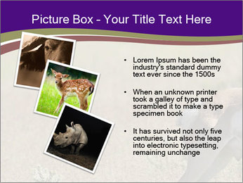 0000073387 PowerPoint Template - Slide 17