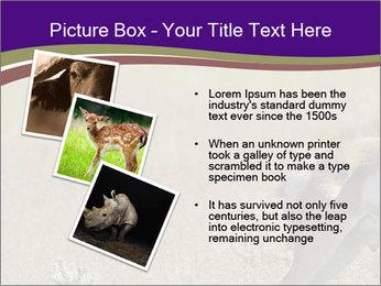 0000073387 PowerPoint Templates - Slide 17