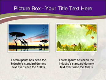 0000073387 PowerPoint Template - Slide 18
