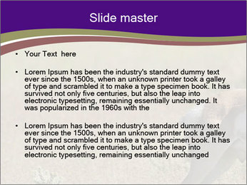 0000073387 PowerPoint Template - Slide 2