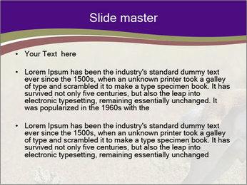 0000073387 PowerPoint Templates - Slide 2