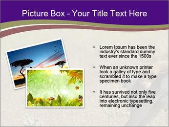 0000073387 PowerPoint Templates - Slide 20