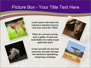 0000073387 PowerPoint Templates - Slide 24