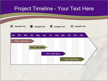 0000073387 PowerPoint Templates - Slide 25