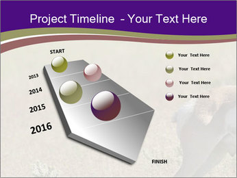 0000073387 PowerPoint Template - Slide 26
