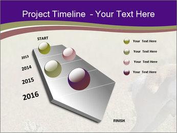 0000073387 PowerPoint Templates - Slide 26
