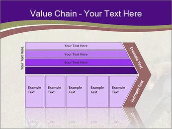 0000073387 PowerPoint Templates - Slide 27