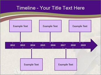 0000073387 PowerPoint Template - Slide 28