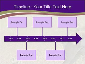 0000073387 PowerPoint Templates - Slide 28