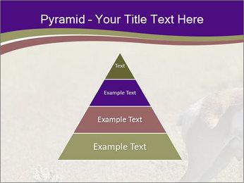 0000073387 PowerPoint Templates - Slide 30