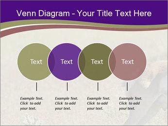 0000073387 PowerPoint Templates - Slide 32