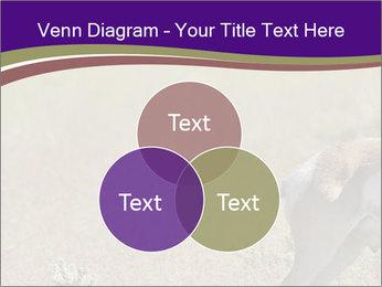 0000073387 PowerPoint Templates - Slide 33