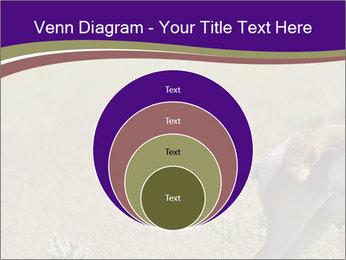 0000073387 PowerPoint Templates - Slide 34