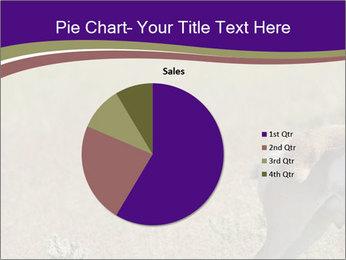 0000073387 PowerPoint Templates - Slide 36