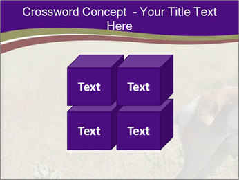 0000073387 PowerPoint Templates - Slide 39