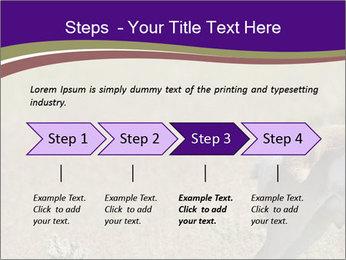 0000073387 PowerPoint Templates - Slide 4