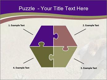 0000073387 PowerPoint Templates - Slide 40
