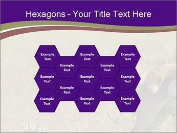 0000073387 PowerPoint Templates - Slide 44