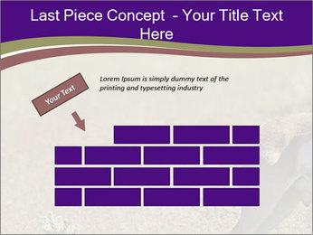 0000073387 PowerPoint Templates - Slide 46