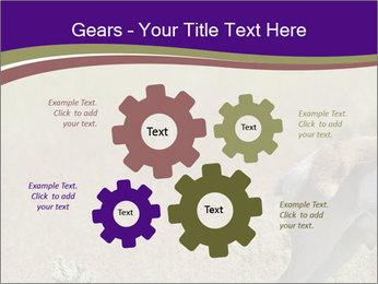 0000073387 PowerPoint Templates - Slide 47