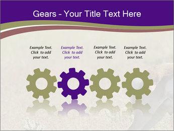 0000073387 PowerPoint Templates - Slide 48