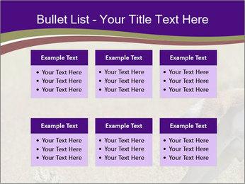 0000073387 PowerPoint Templates - Slide 56
