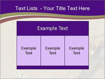 0000073387 PowerPoint Templates - Slide 59