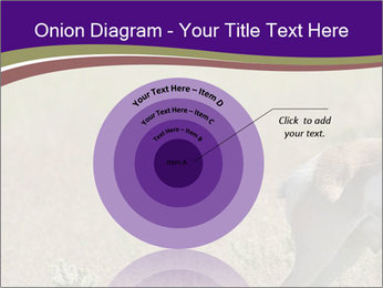 0000073387 PowerPoint Templates - Slide 61