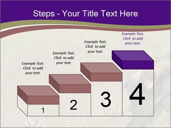 0000073387 PowerPoint Templates - Slide 64