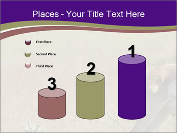 0000073387 PowerPoint Templates - Slide 65