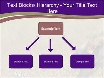 0000073387 PowerPoint Templates - Slide 69