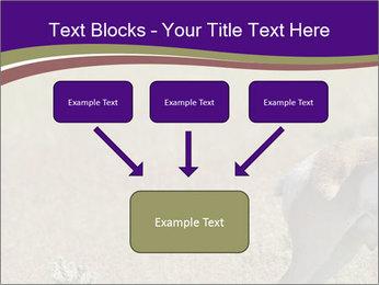 0000073387 PowerPoint Templates - Slide 70