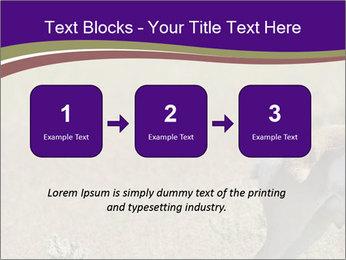 0000073387 PowerPoint Templates - Slide 71