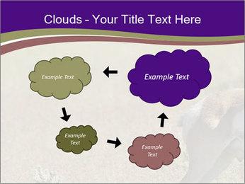 0000073387 PowerPoint Templates - Slide 72