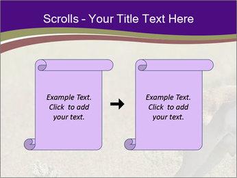0000073387 PowerPoint Templates - Slide 74