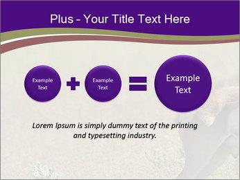 0000073387 PowerPoint Templates - Slide 75